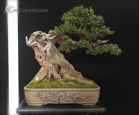 bonsai pot 13